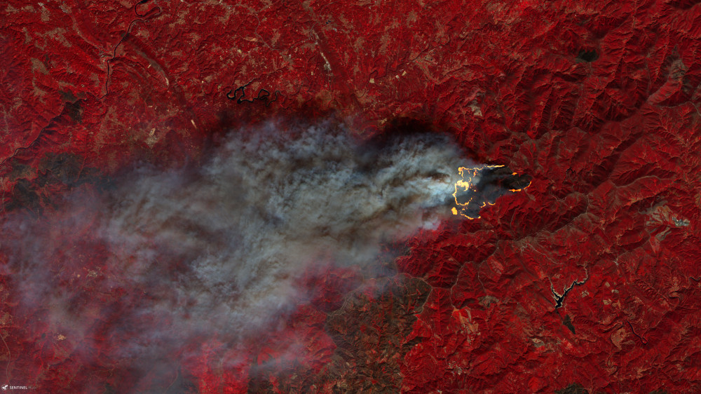 Wildfire hot spots highlighted on false color backdrop