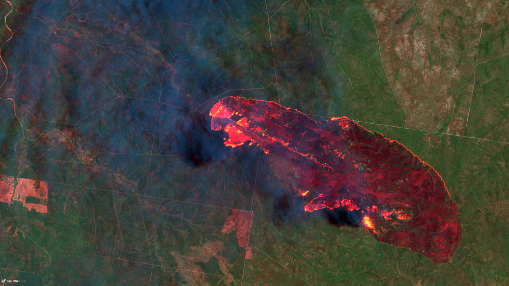 Sentinel-2 image of a wildfire in the Pilliga National Park in Australia.